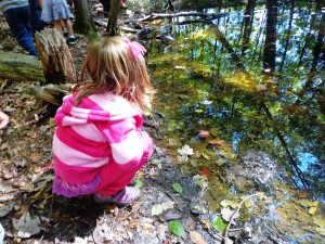 sept vernal pool 011